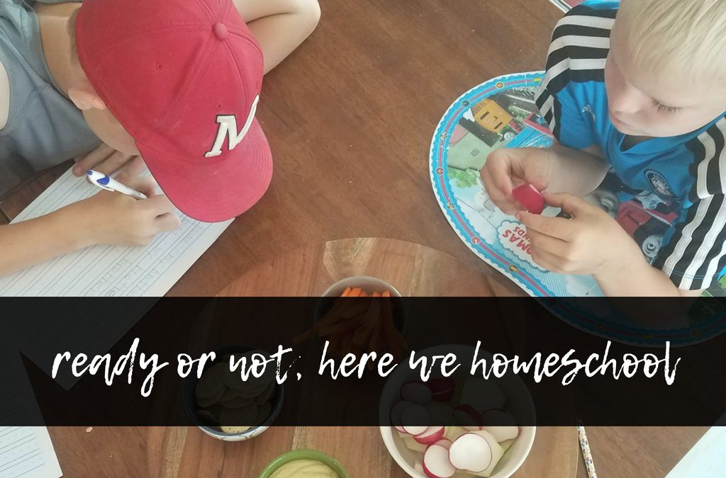 Making the Homeschool Decision